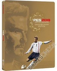 PES 2019: Pro Evolution Soccer [David Beckham Edition] (PS4)