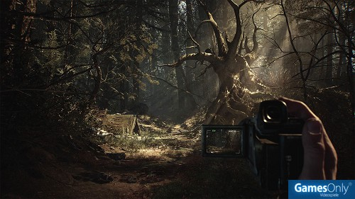 Blair Witch PS4 PEGI bestellen