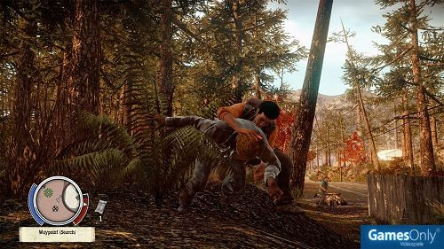 State of Decay PC